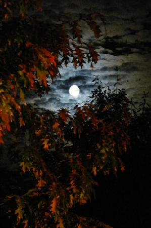 Stowe, VT: October moon