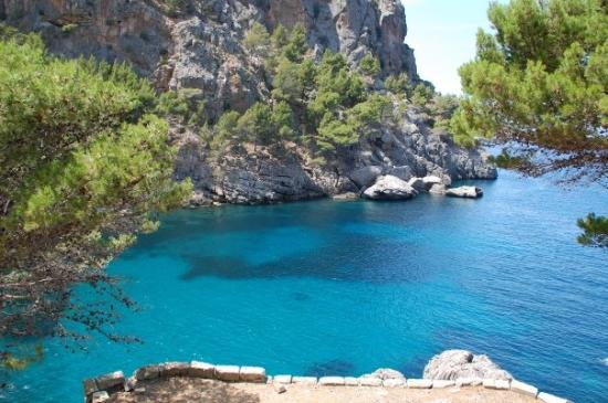 Illetes, İspanya: Another beatiful cove in Mallorca - color of the water is amazing.