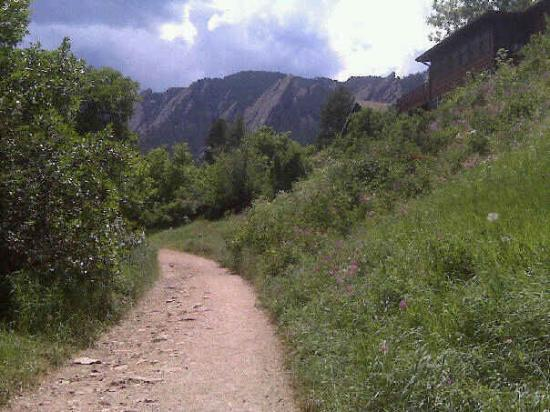 Mesa Trail: You can see the Flat Irons in the backround