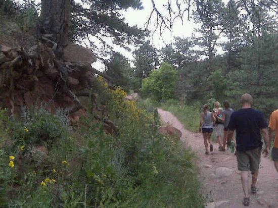 Mesa Trail: Hiking with friends
