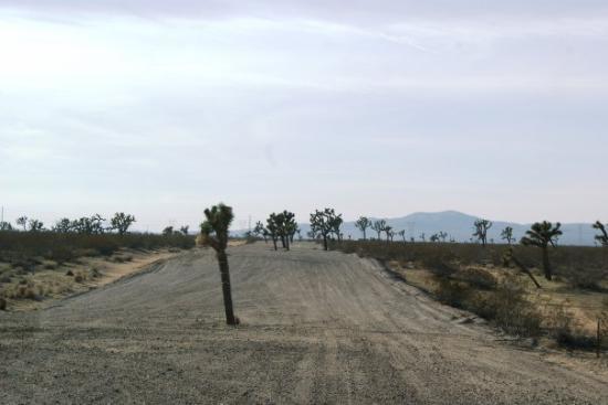 Death Valley National Park, Kaliforniya: No in potem prideš tudi to take ceste ampak moraš zaupat da tudi ta nekam pelje....je težko, mor