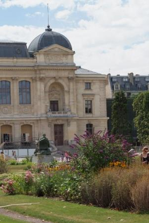 Jardin des Plantes Photo