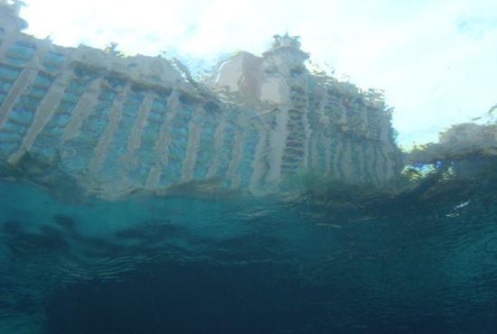atlantis underwater picture of nassau new providence island