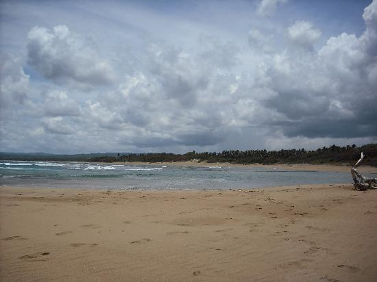 Occidental Caribbean Village Playa Dorada: Privacy on beach walk!