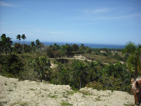 Occidental Caribbean Village Playa Dorada: View whilst out horse riding
