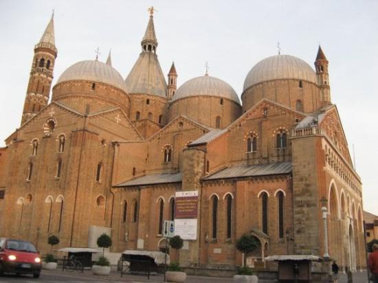 Basilica di Sant'Antonio - Basilica del Santo: San Antonio