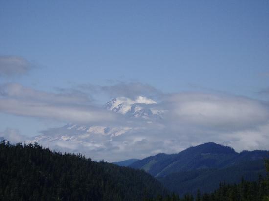 Quality Inn: Mt Rainier