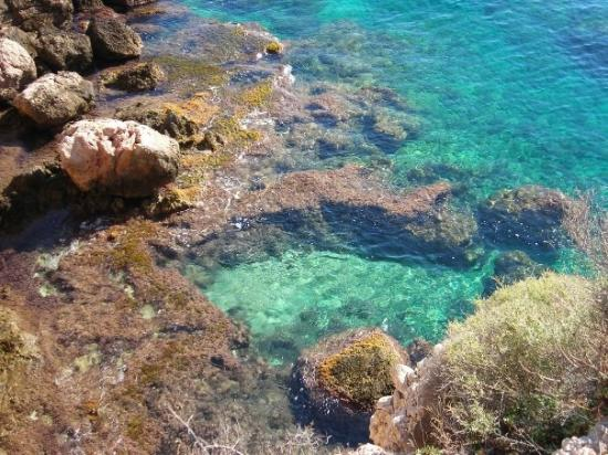 Illetes, Spanien: Clear sea water Mallorca