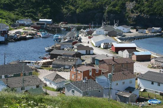 Trout River, Canadá: the harbour