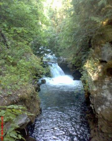 Things to do in roseburg oregon area
