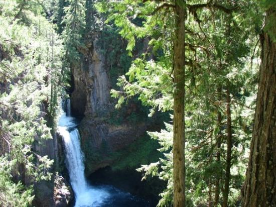 Roseburg, OR: Toketee Falls