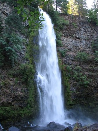 Roseburg, OR: Mill Creek Falls from the river