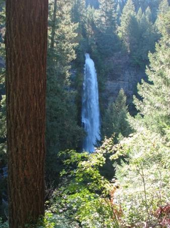 Roseburg, OR: Mill Creek Falls