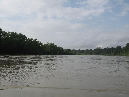 Ara Macao Las  Guacamayas: 67,000 hectáreas de reserva natural montes azules