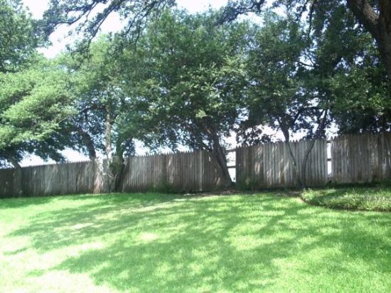 The Grassy Knoll - Picture of Dallas, Texas - TripAdvisor