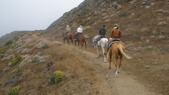 Ross Ranch: up the trail from the ocean