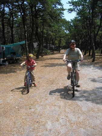 North Of Highland Camping Area: Sand & pine needles make for a great quick-dry campground!