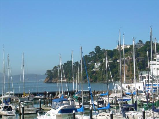 Tiburon, CA: View from outside the hotel window.