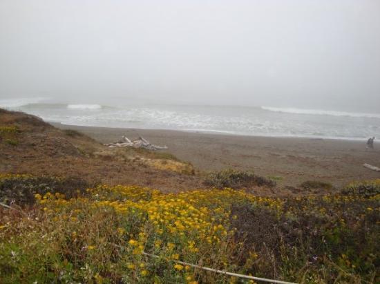 แคมเบรีย, แคลิฟอร์เนีย: View of the ocean from our hotel.