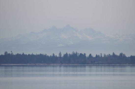 Blaine, Etat de Washington : Drayton Harbor