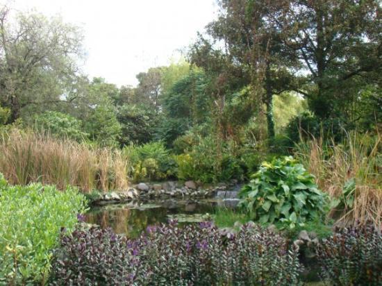 Jardin botanique de quito