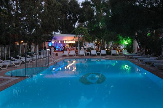 Okaliptus Hotel : pool