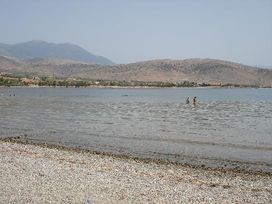Apopsis: beach in Galaxidi (2 minute drive)