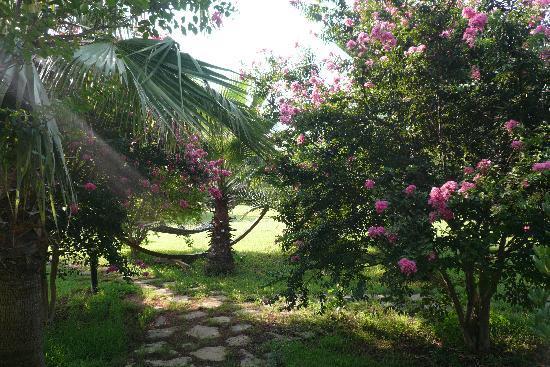 Odile Hotel: Garden