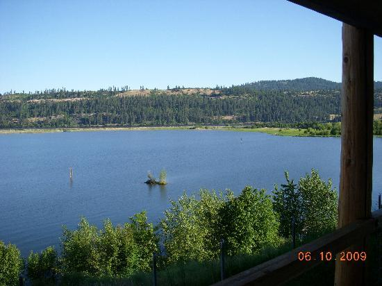 Lakeview Lodge: view off the back deck from our screen door on our room