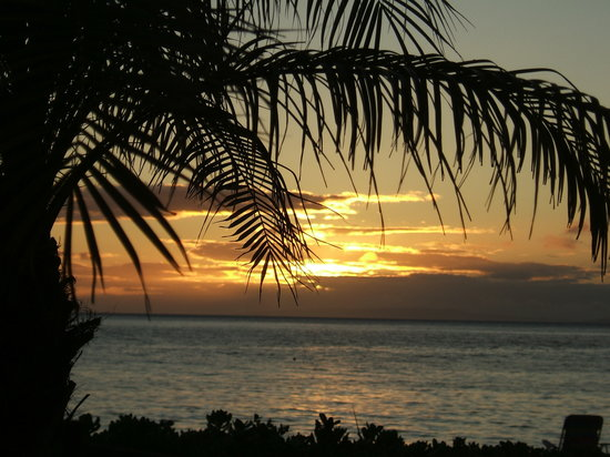 أستون آن ذا ويلر أون كانابالي بيتش: Whaler BBQ sunset