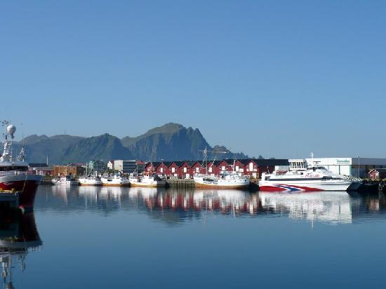Whalesafari Andenes: first boat from right is newer boat, second is older boat we took both trips