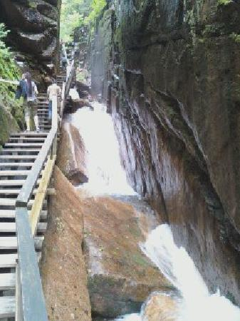 Maple Lodge Cabins and Motel: Flume Gorge - intense and powerful.