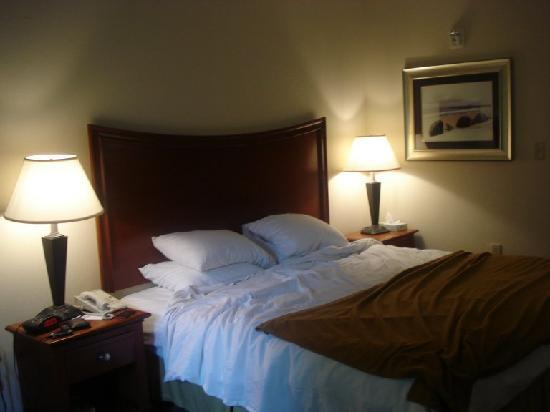 Holiday Inn Express Hotel & Suites Pensacola W I-10: Cozy and HUGE King Size bed