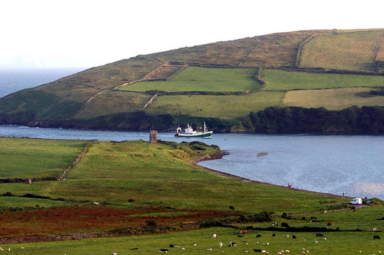 Pax Guest House: View of the inlet to Dingle Harbor