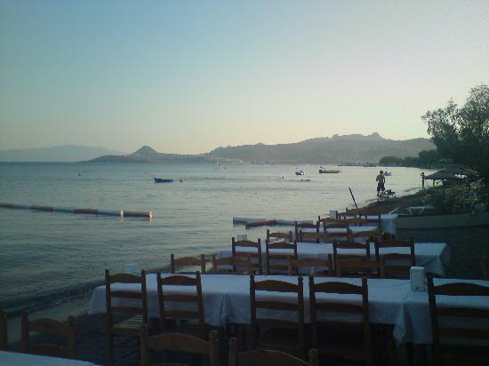 Tamarisk Beach Hotel: The beach at dusk