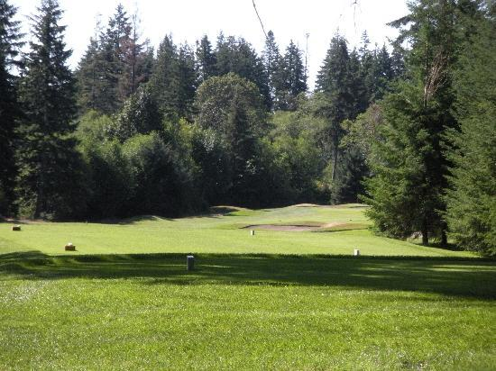 Storey Creek Golf Course: Storey Creek GC