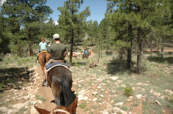 Tusayan, AZ: Trail riding at Apache Stables
