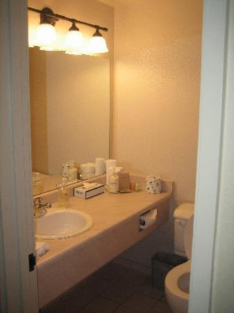 The Thompson Hotel and Conference Centre: Bathroom