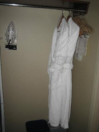 The Thompson Hotel and Conference Centre: Closet and Robes