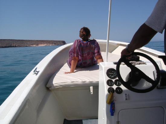 Baja Camp: via per altre avventure..