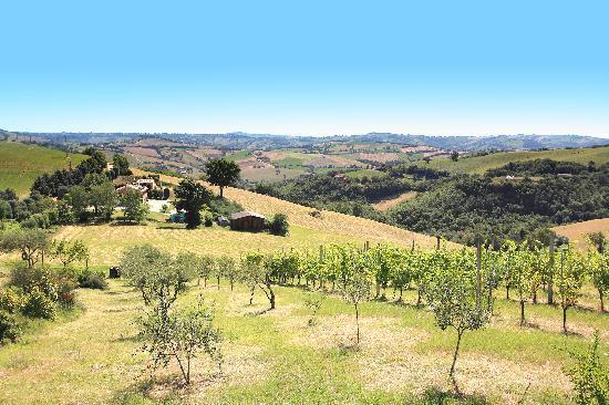 Tolentino, Italie : vista a 180° del casale con vista sulle dolcissime colline marchigiane