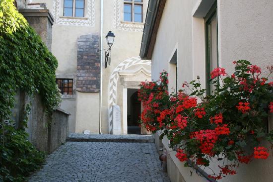 Gartenhotel & Weingut Pfeffel Dürnstein: Dürnstein