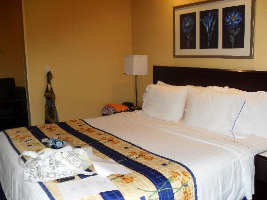 SpringHill Suites Portland Hillsboro: The decor was super cute!