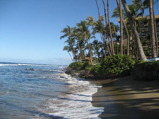 Hyatt Regency Maui Resort and Spa: Walk along the Beach