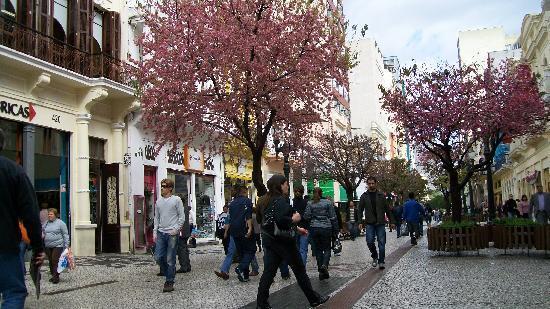 Curitiba, PR: calle XV de noviembre
