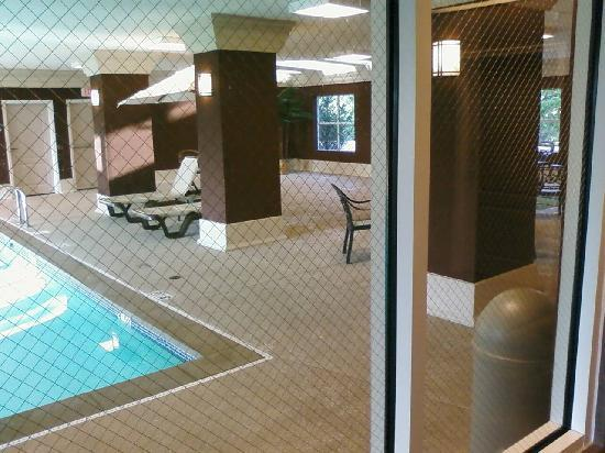 Homewood Suites by Hilton Indianapolis Northwest : Pool/hot tub