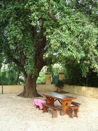 Porto Azzurro, Italy: eine der vielen gemütlichen Sitzgelegenheiten im Garten