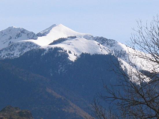 Chalet le Chapeau Bleu : View from the garden