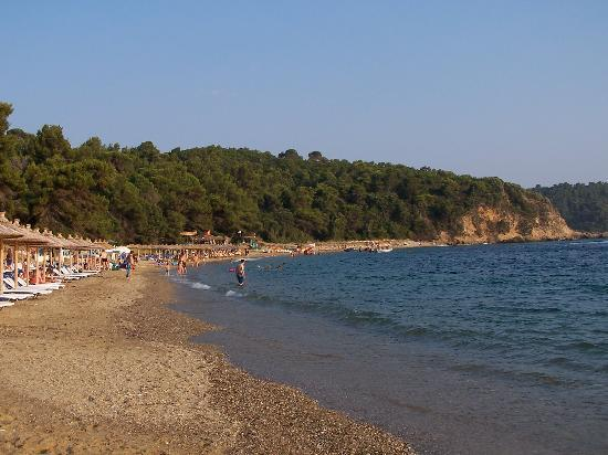 Skiathos, Greece: Agia Eleni beach - evening