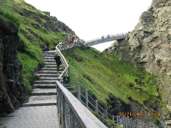 Tintagel Castle: That's how you get up there!  Take a deep breath and climb.